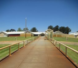 Image of entry path leading to reception at Casuarina Prison